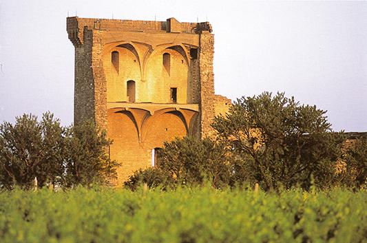 Le château de Châteauneuf-du-Pape - Vue intérieure