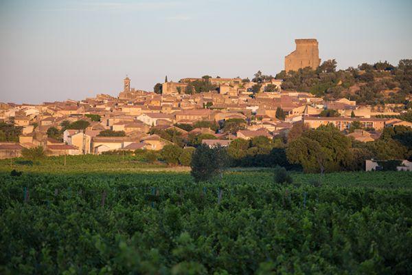 Châteauneuf-du-Pape au lever du jour